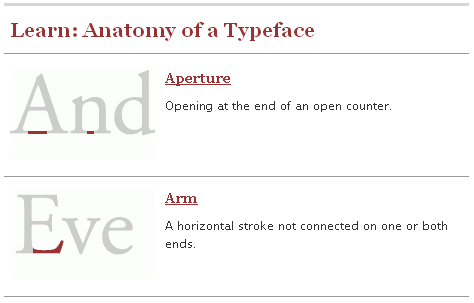 typedia anatomy of typeface